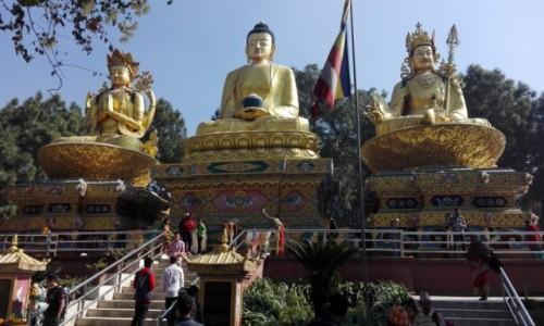 Zdjecie NEPAL / Katmandu / Świątynia Małp / Monkey Temple