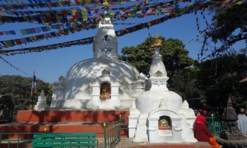 Zdjecie NEPAL / Środkowa część Nepalu / Katmandu / Swayambunath