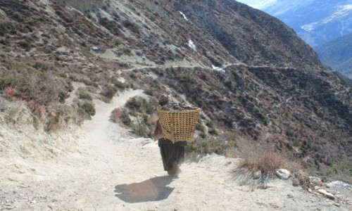 Zdjecie NEPAL / Annapurna /  okolice Manang / Nepal