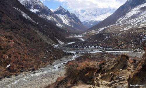 NEPAL / Manaslu / okolice Samdo / Gdzieś na nepalskim treku