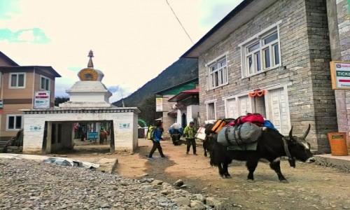 Zdjęcie NEPAL / Himalaje / Lukla / Lukla