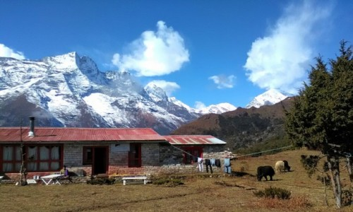 Zdjecie NEPAL / Himalaje / okolice Namche Bazar / Gospodarstwo w Himalajach