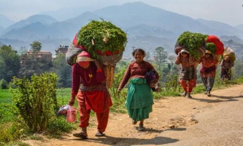 Zdjęcie NEPAL / dolina Katmandu / - / kobiety Nepalu