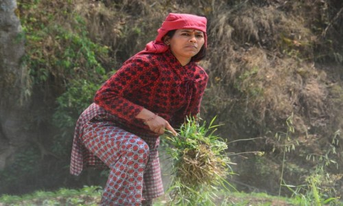 Zdjecie NEPAL / dolina katmandu / - / kobiety nepalu