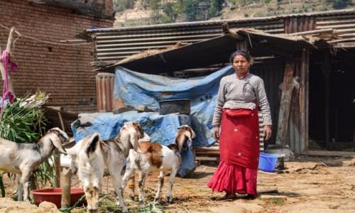 Zdjecie NEPAL / - / - / Nepal