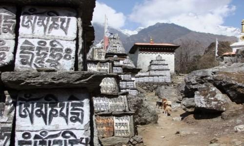 Zdjecie NEPAL / Khumbu / W drodze do Namche / Mantra,mantra, mantra