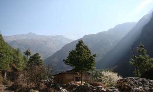 NEPAL / Khumbu / Dolina Dudh Koshi / Dolina Dudh Koshi