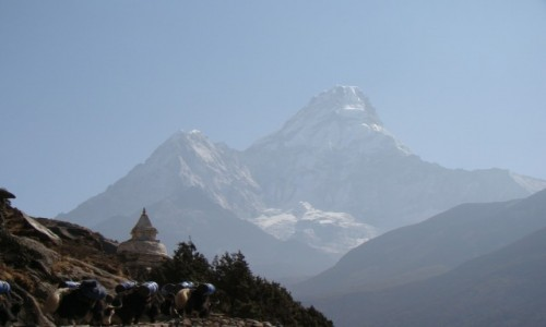 Zdjęcie NEPAL / Himalaje / Himalaje / Ama Dablam