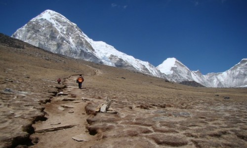 NEPAL / Himalaje / Szlak na Kala Pattar / Szlak na Kala Pattar, w tle Pumori