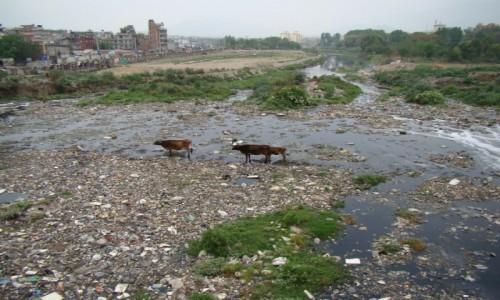 Zdjecie NEPAL / Kathmandu / Kathmandu / Rzeka Bishumati
