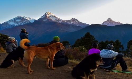 NEPAL / Katmandu / Himalaje / wschód słońca na Poon Hill