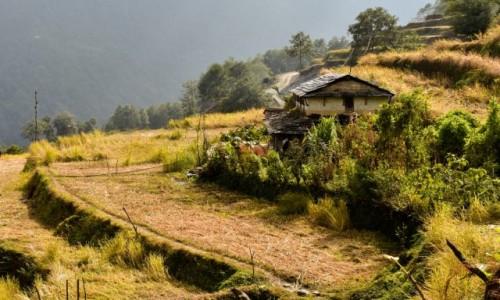 NEPAL / Himalje / Himalaje / gdzieś na trasie do Annapurna Base Camp