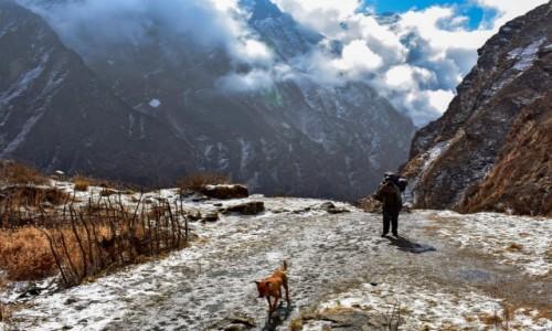 NEPAL / obszar Annapurny / Himalaje / W drodze