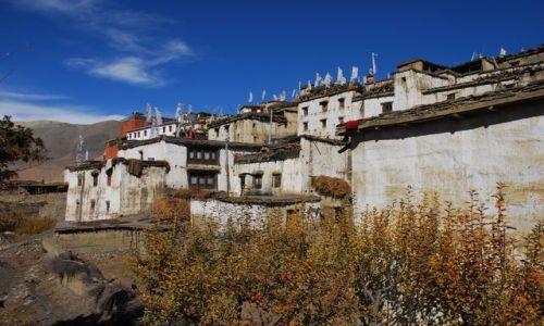 Zdjęcie NEPAL / Annapurna TREK / NEPAL / Wioska
