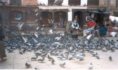 NEPAL / Kathmandu / Thamel / Jak na Krakowskim Rynku