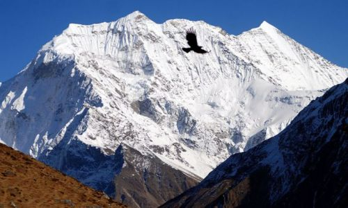 Zdjecie NEPAL / Himalaje / Manaslu / Trekking dookoła Manaslu