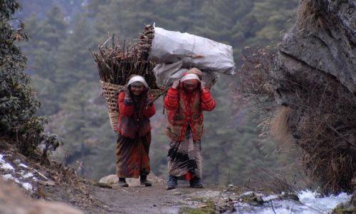 Zdjecie NEPAL / Khumbu Valley / Namche Baazar  / Dziewczyny z chrustem