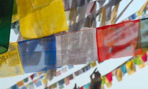Zdjęcie NEPAL / Kathmandu valley / Kathmandu / flagi modlitewne