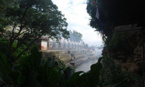 Zdjecie NEPAL / środkowy / świątynia hinduistyczna / świątynia Pasup