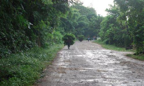 Zdjęcie NEPAL / południe, tuż przy granicy z Indiami / Chitwan National Park / Chitwan National Park