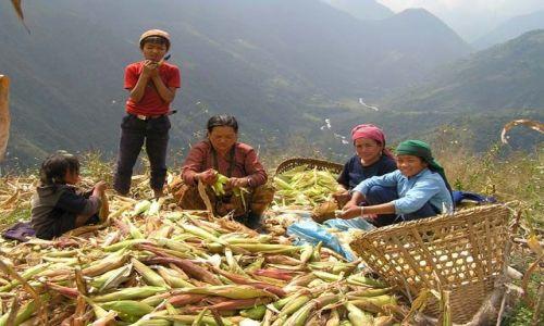 Zdjecie NEPAL / Nepal / Okolice Teplejung / Ludzie Nepalu