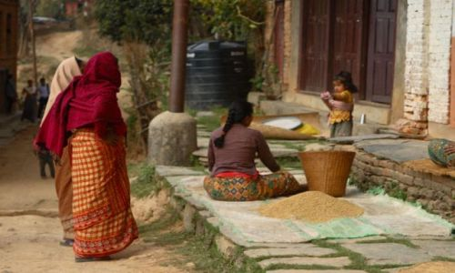 Zdjęcie NEPAL / Bandipur / Bandipur / Zbiory