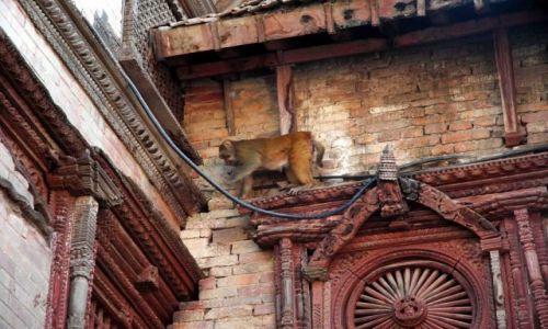 Zdjęcie NEPAL / durbar sq / kathmandu / każdy znajdzie tu swój dom