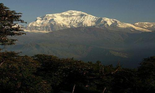 Zdjęcie NEPAL / Annapurna Sanctuary / Ghorephani / Dhaulaghiri 8164