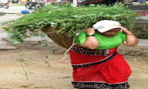 Zdjecie NEPAL / brak / gdzies na szlaku.. / ciężkie lecz barwne zycie..