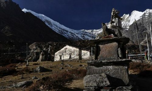 Zdjęcie NEPAL / Lantang / Lantang / Kyanjin Gompa 3850m