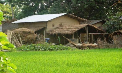 Zdjecie NEPAL / Chitwan Park / Chitwan Park / Dom