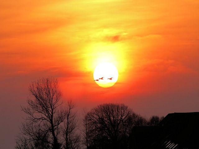 Zdjęcia: okolica Greetsiel, zachód słońca, NIEMCY