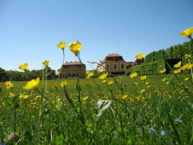 Zdjęcia: Grossedlitz, wiosna w parku, NIEMCY