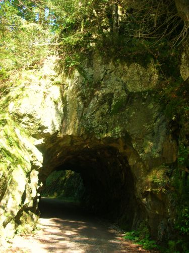 Zdjęcia: murg, schwarzwald, i nastepny tunelik, NIEMCY