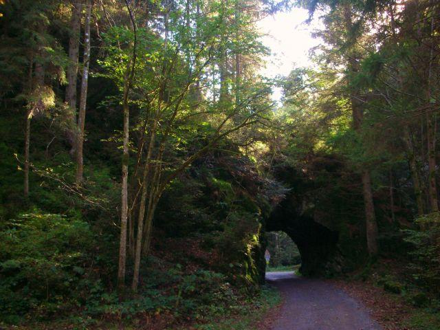 Zdjęcia: murg, schwarzwald, tunelik, NIEMCY