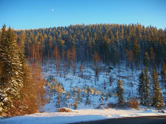 Zdjęcia: schluchsee, schwarzwald, zima2007, NIEMCY