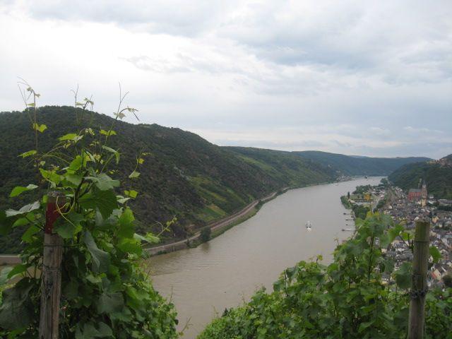 Zdjęcia: Okolice Bad Breisig, Nadrenia, Kraina Lorelei, NIEMCY