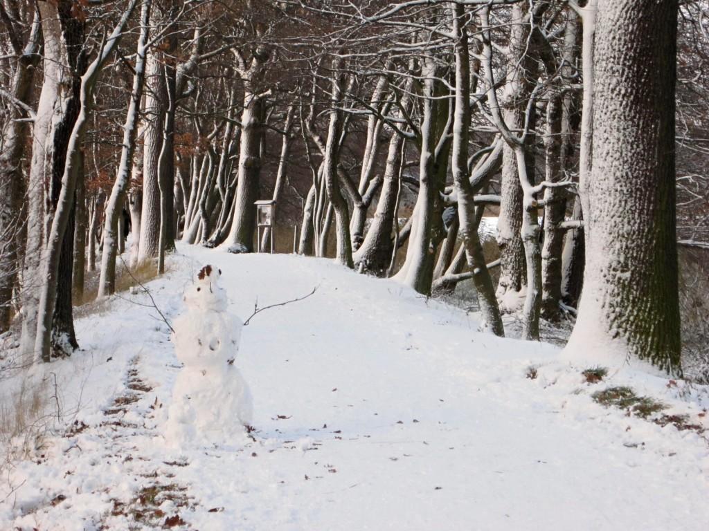 Zdjęcia: Braunschweig, niedersachsen, taką zimę kochamy..., NIEMCY