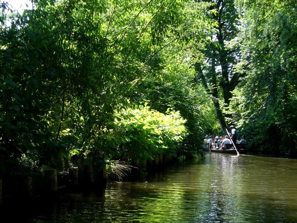 Zdjęcia: Spreewald, Szprewaldzie, Łodzią po kanałach, NIEMCY