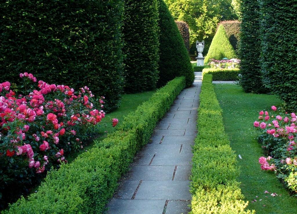 Zdjęcia: Forst, Nederlausic, Aleja w ogrodzie różanym, NIEMCY