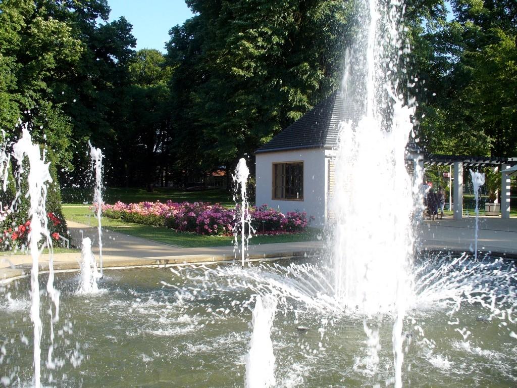 Zdjęcia: Forst, Nederlausic, Fontanny w ogrodzie rózanym, NIEMCY