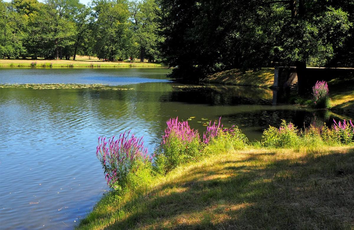 Zdjęcia: Park Krajobrazowy w Branitz, Brandenburgia, i znów - szkoda lata..., NIEMCY