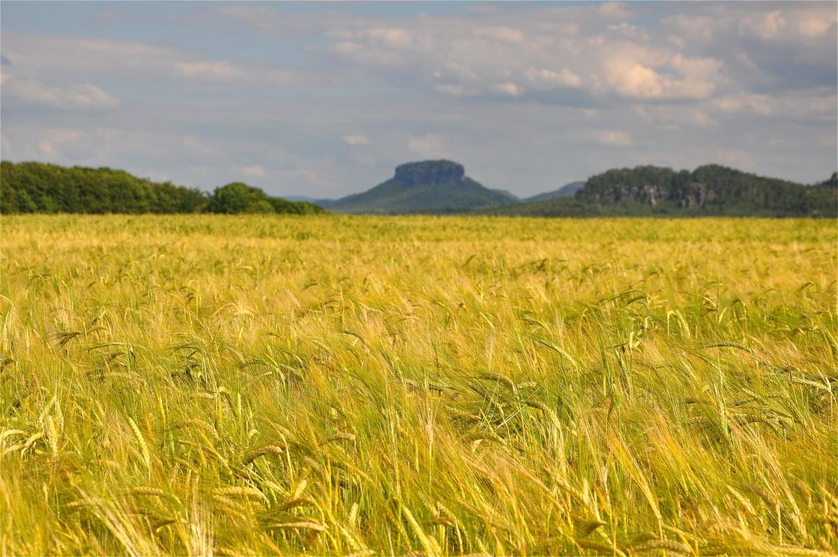 Zdjęcia: Hohnstein, Saksonia, Saksoński krajobraz, NIEMCY
