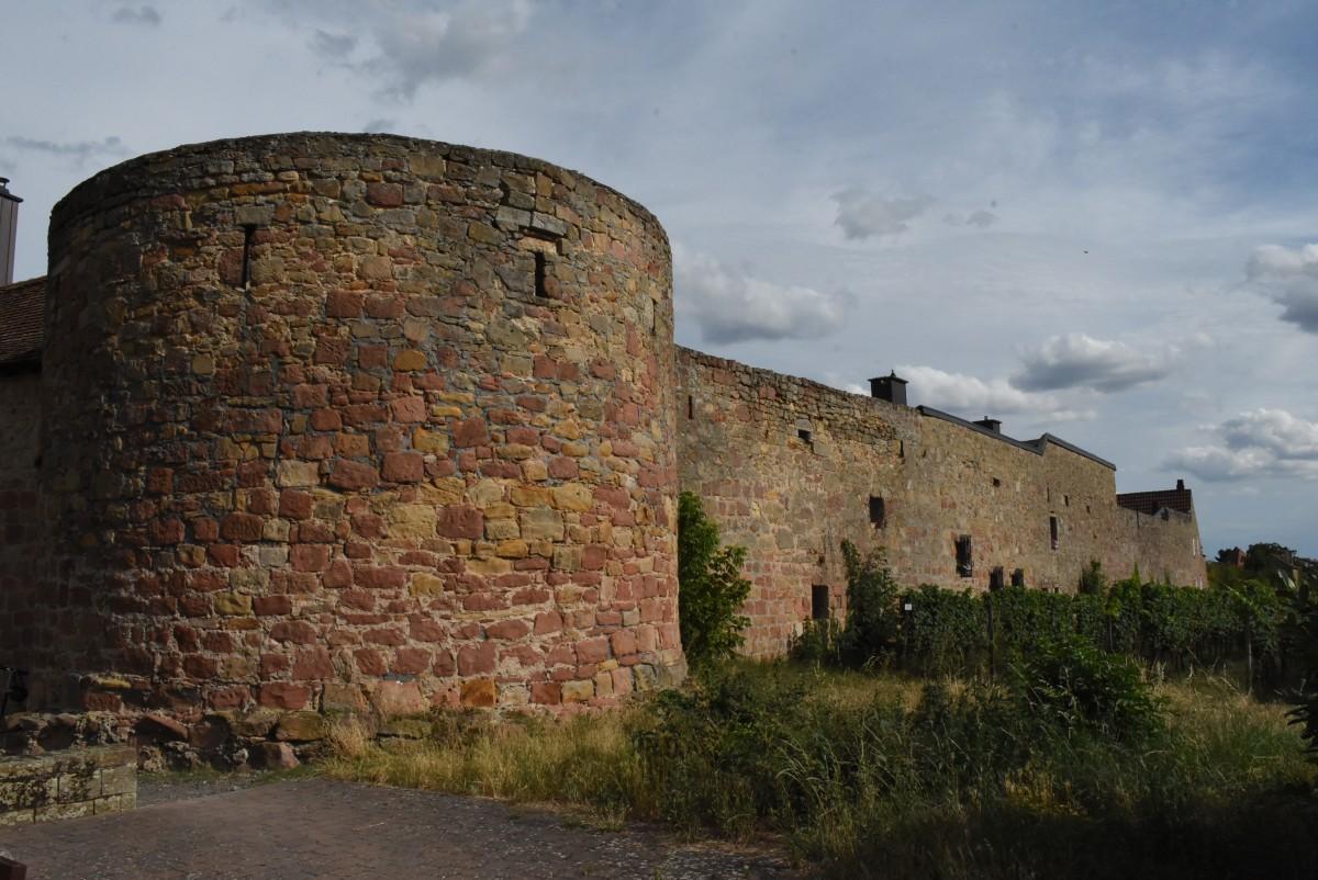 Zdjęcia: Wachenheim, Nadrenia Pallatynat, Wachenheim, mury miejskie, NIEMCY