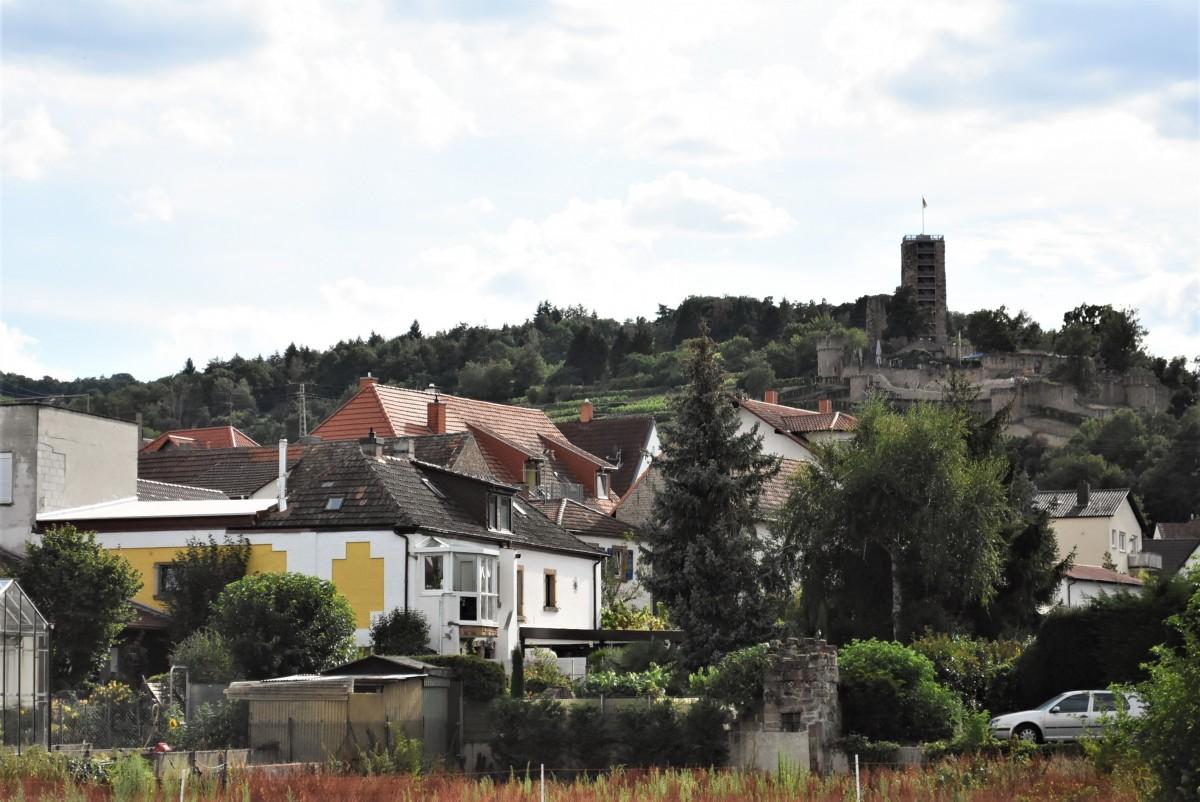 Zdjęcia: Wachenheim, Nadrenia Pallatynat, Wachenheim, widok na zamek, NIEMCY