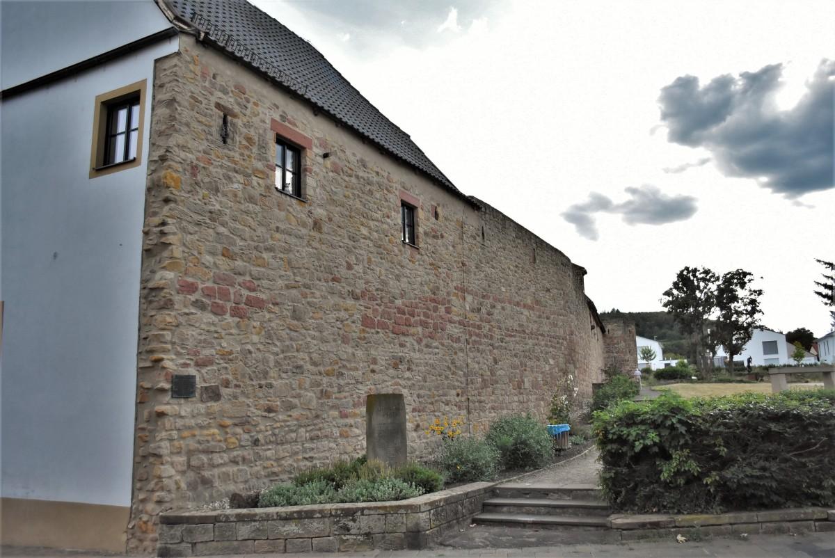 Zdjęcia: Wachenheim, Nadrenia Pallatynat, Wachenheim, mury miejskie z XIV w., NIEMCY