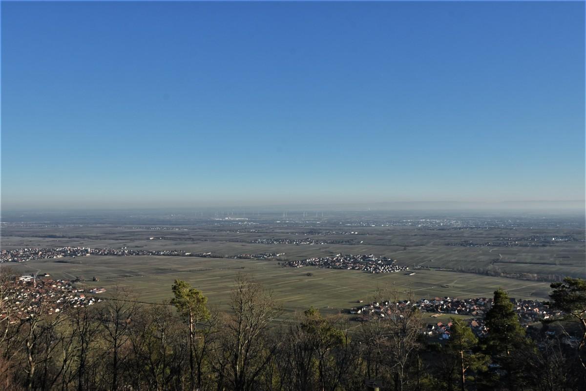 Zdjęcia: Edenkoben, Nadrenia Pallatynat, Rietburg, panorama na okolice, NIEMCY