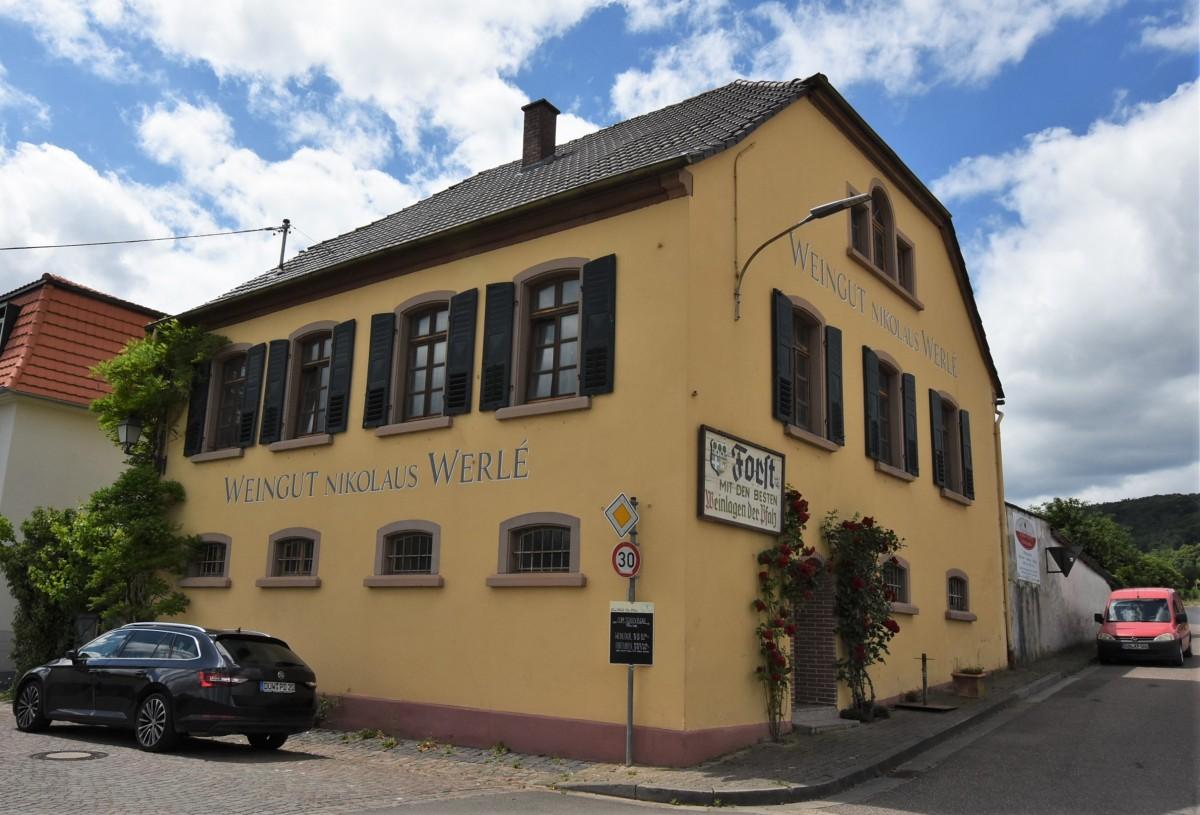 Zdjęcia: Forst an der Weinstrasse, Nadrenia-Palatynat, Forst an der Weinstrasse, NIEMCY
