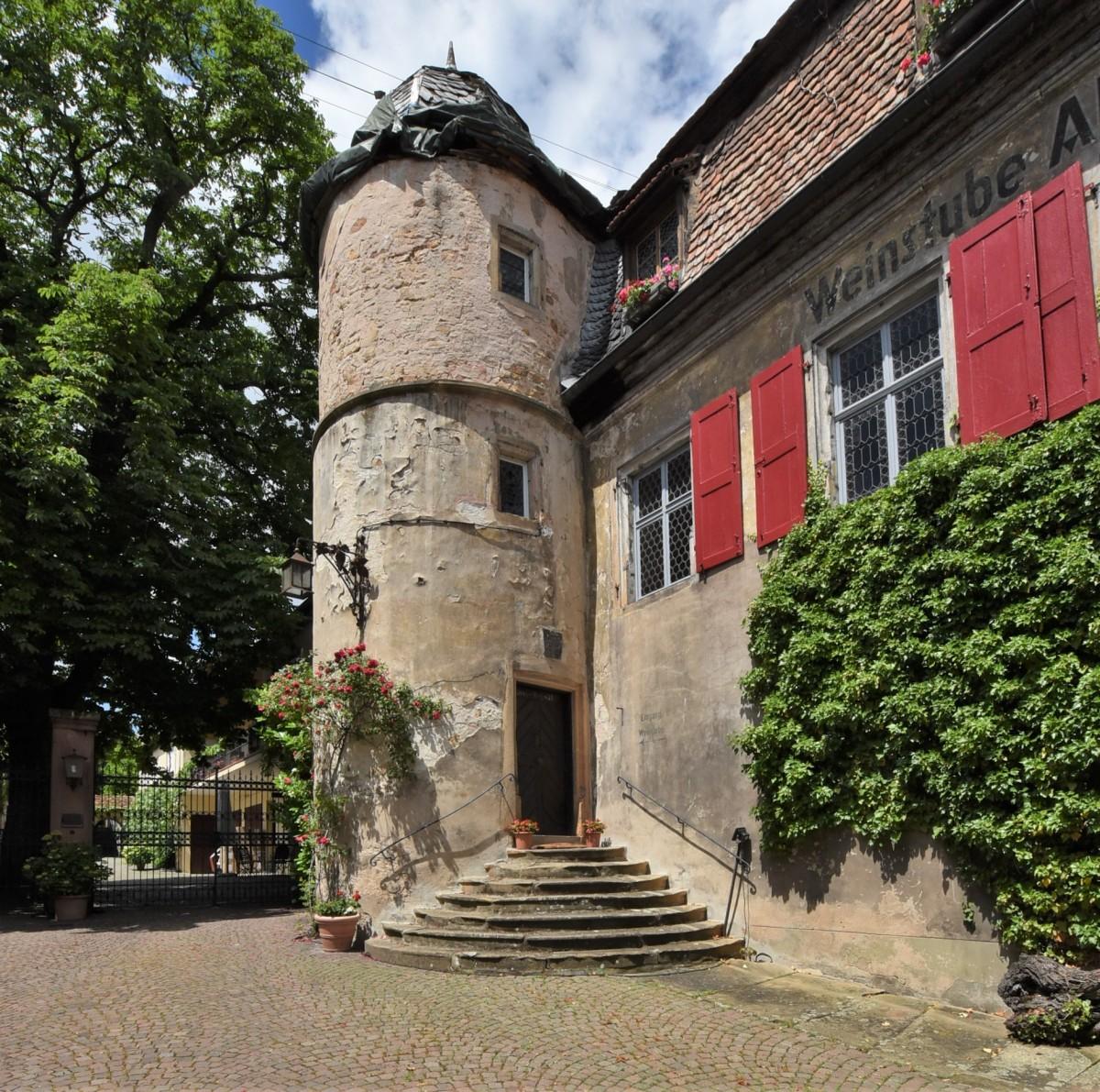 Zdjęcia: Forst an der Weinstrasse, Nadrenia Palatynat, Forst an der Weinstrasse, u winiarza, NIEMCY