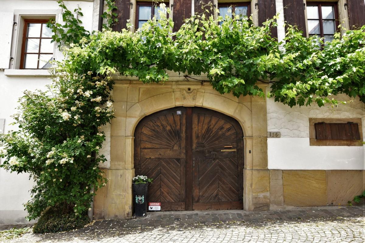 Zdjęcia: Forst an der Weinstrasse, Nadrenia Palatynat, Forst an der Weinstrasse, zabytkowy portal z winoroślą, NIEMCY